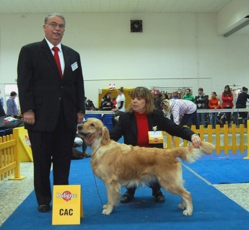 Nitra2011_ Lexy with judge