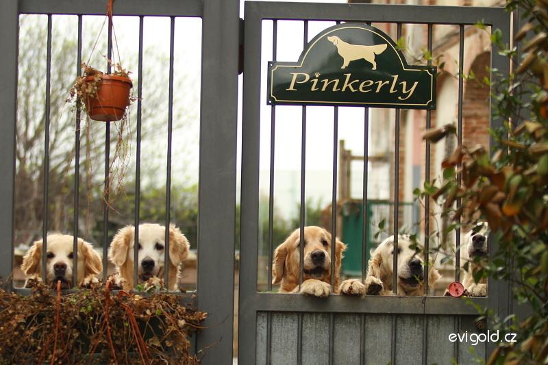 pinkerly gate